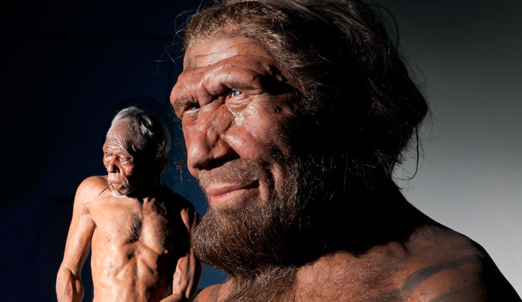 finest selection 83dd1 36f1c These 5 Signs Suggest That The Human Race Is Still Evolving ...