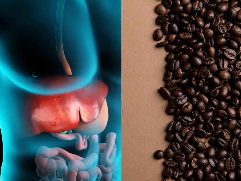 Drinking Coffee Has An Unusual Affect on Your Liver and The Damage Booze Has Done