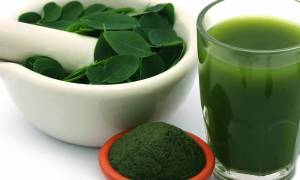Benefits of drinking moringa