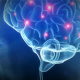 Naegleria Fowleri brain eating amoeba